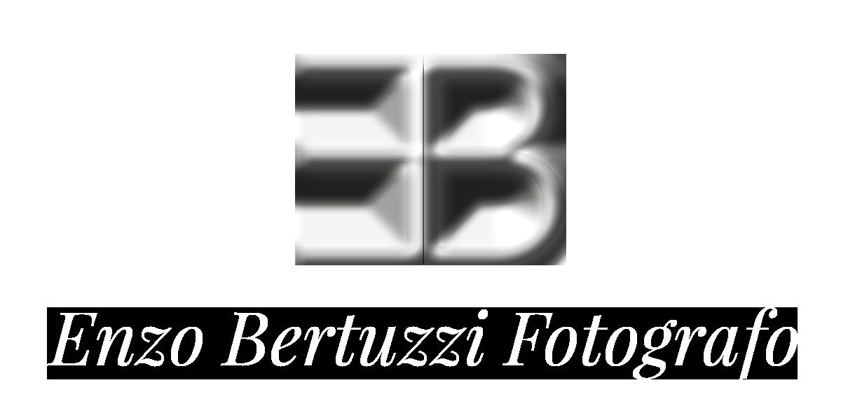 logo Enzo Bertuzzi